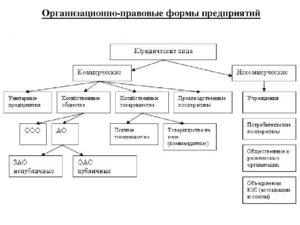 Смена организационно правовой формы днп 2020 217фз