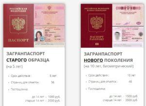 Разница между старым и новым загранпаспортом