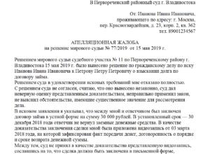 Краткая апелляция по гражданскому делу образец