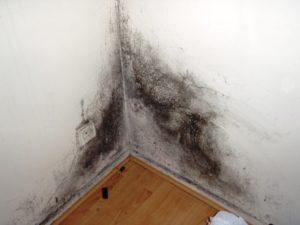Почему сыреют углы