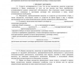Брачный договор для покупки квартиры с материнским капиталом