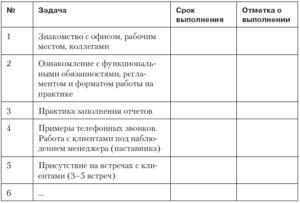 План работы на испытательный срок для руководителя