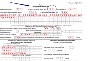 Пример заполнения расчета по страховым взносам с декретницами