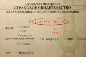 Как расшифровать номер снилс