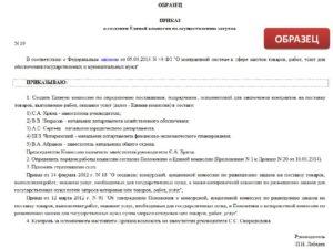 Приказ о создании комиссии 223 фз