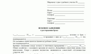 Заявление в мировой суд о расторжении брака образец