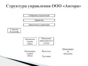Органы управления ооо схема