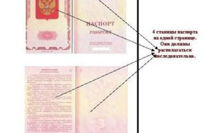 Копию каких страниц паспорта надо делать при оформлении загранпаспорта нового типа