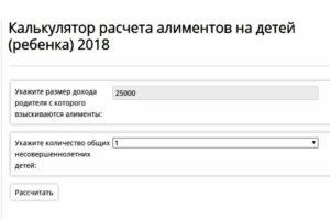 Калькулятор расчета алиментов на двоих детей 2020